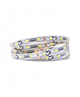 Produkt: ORO LED PASIK 300LED/5m STRIP-300L-SMD-2835-WD-BC 4,8W/m 5901752719965