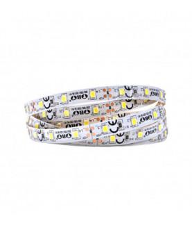 Produkt: ORO LED PASIK 300LED/5m STRIP-SMD-2835-NWD-BD-8mm-50m 4,8W/m 5902533193615